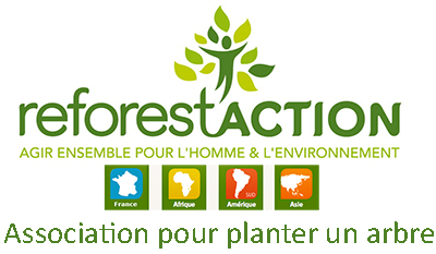 Reforestaction association pour planter des arbres