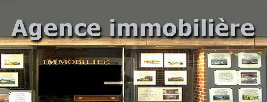 Les avantages et inconv nients d 39 une agence immobili re for Agence immobiliere i