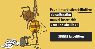 interdiction-définitive-du-sulfoxaflor.png